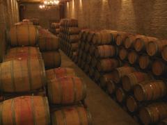 193-Wine Barrels-Santa Laura in Chile