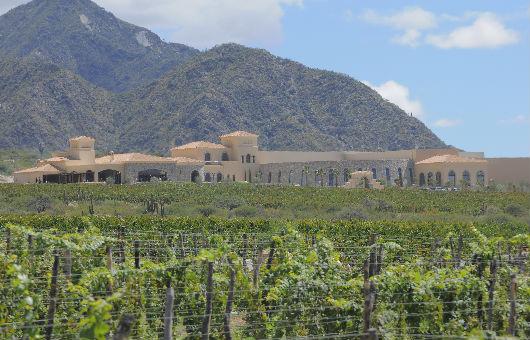 piattelli-argentina-terroir-winery