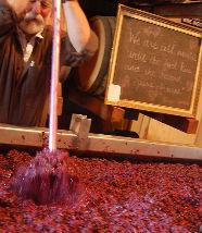 mashing-rose-grapes