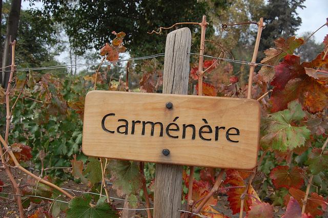 carmenere-sign-post