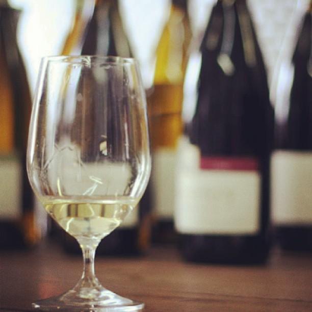pinot-blanc-the-basics
